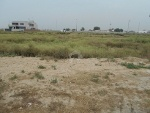 Picture One kanal plot for sale
