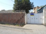 Picture House For Rent In Peshawar