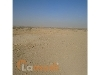Picture 500 Sq Yd Residential Plot, Red Zone, Sector...