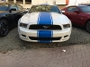 Photo Ford mustang premium 2014