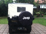 Foto Jeep willys 1953 ORIGINAL