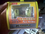 Foto Hallogen Pure Yeloow, hid All Type Dll
