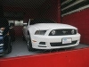 Picture 2014 Ford Mustang for Sale