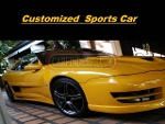Picture 1992 Customized Sports Car