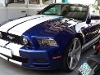 Picture Used Ford Mustang
