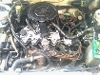 Picture Nissan Sunny Excellent Condition